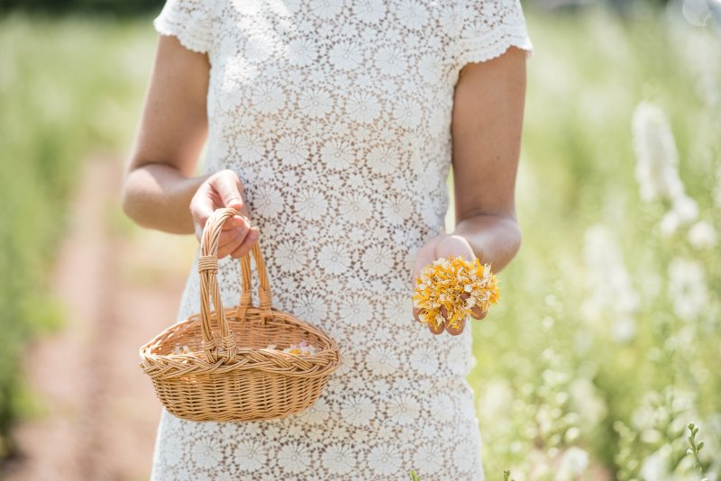 ShropshirePetals.com_Flower_Girl_Basket_with_Sunshine_Kisses___16__4_