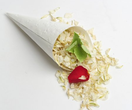 ShropshirePetals.com_White_Confetti_Cones_with_Pick_and_Mix_Petals_Romeo_and_Juliette_and_Envy___13.50_per_litre