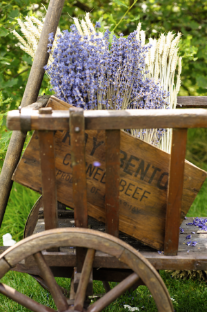 Lavender_and_wheat_in_cart