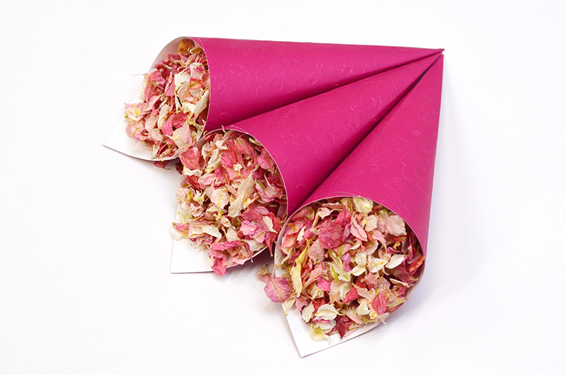 Blush_with_Raspberry_Confetti_Cones