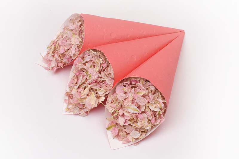 Candy_Floss_with_Coral_Confetti_Cones