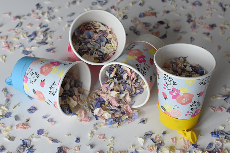 Paper_Cup_Blog__06_
