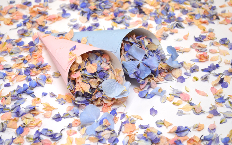 May_confetti_MOTM_Pink_and_Blue_cones