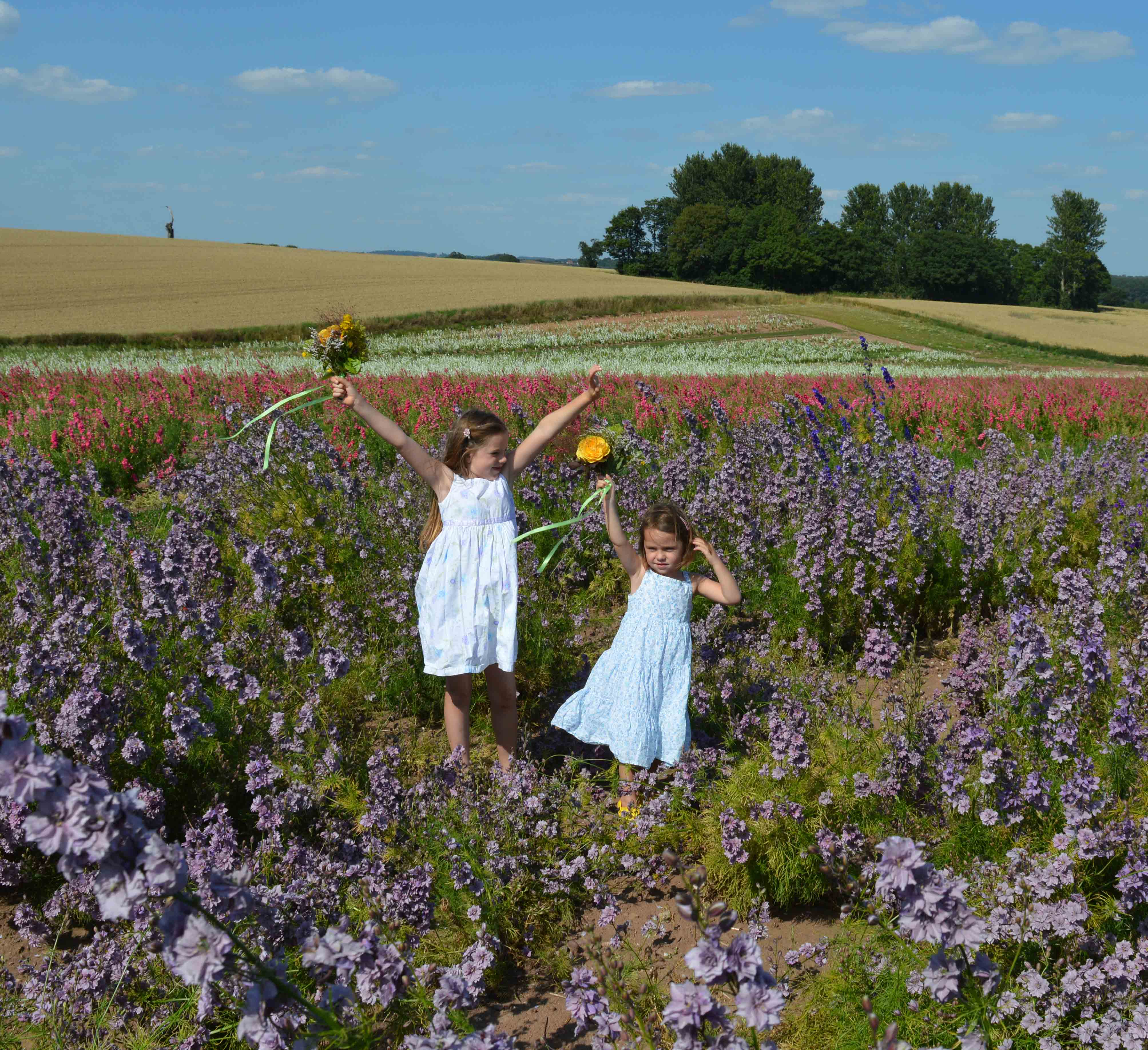 girls_holding_posies_high_in_the_field