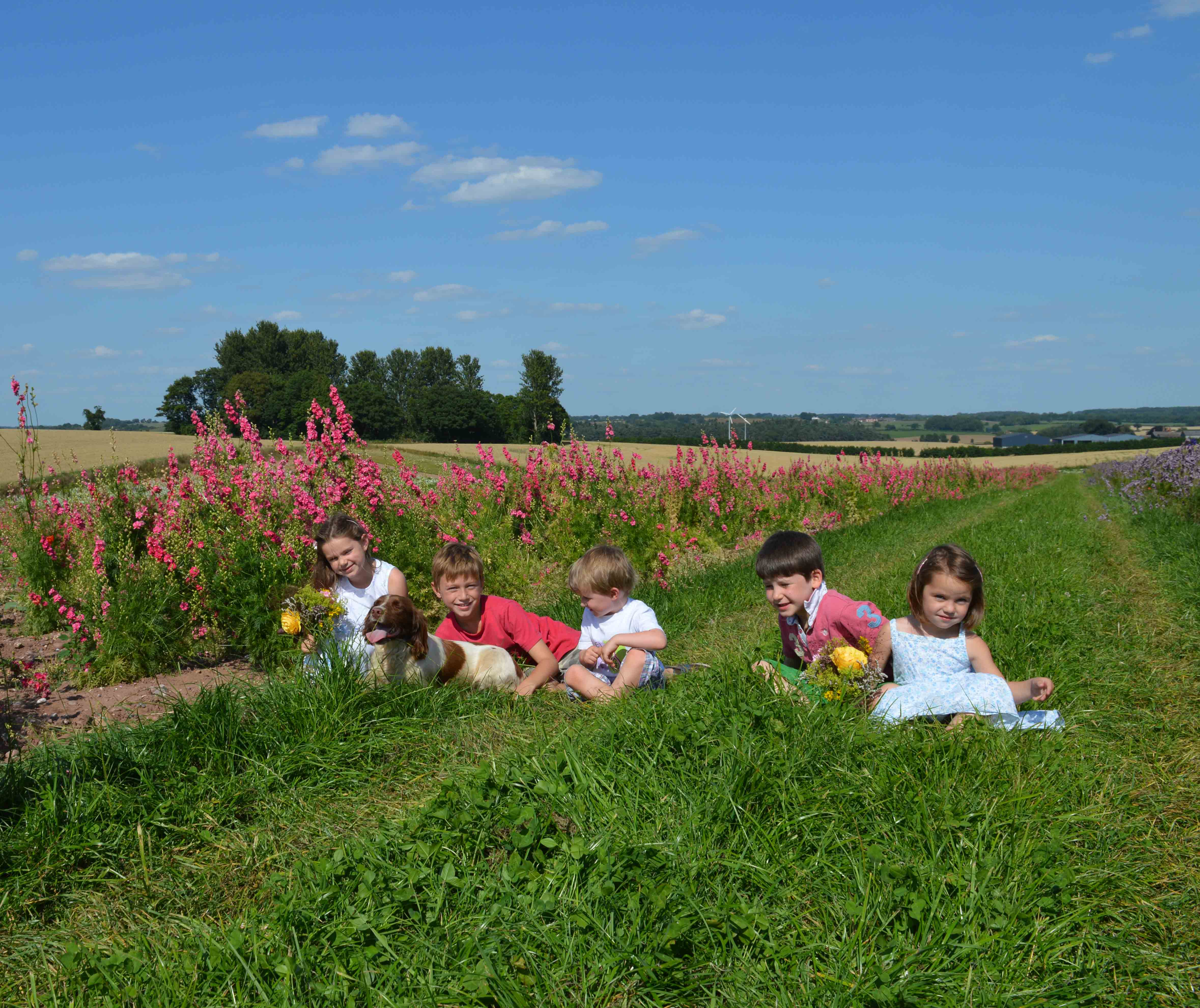 kids_in_the_larkspur_field_with_maris
