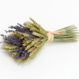 wheat_and_lavender_bundles