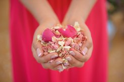 handful_of_pink_confetti