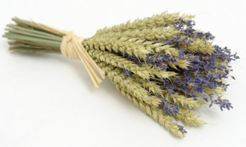 wheat_bundles_with_lavender