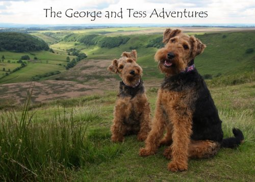 george_and_tess