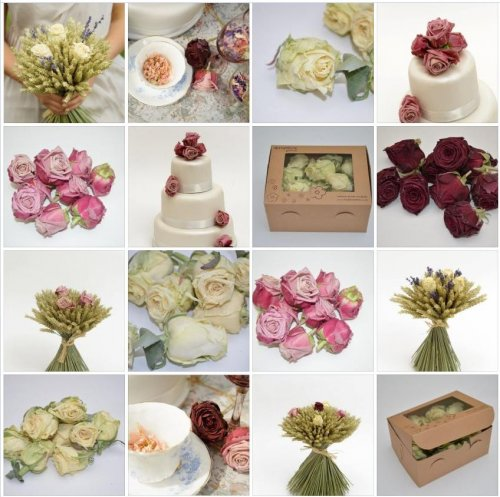 Freeze Dried Rose Heads Biodegradable Petal Confetti