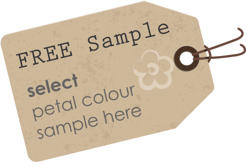 FREE Sample - select petal colour samples here
