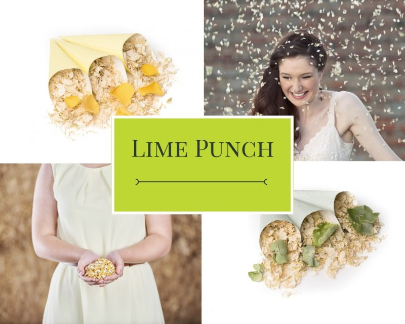 Lime_Punch