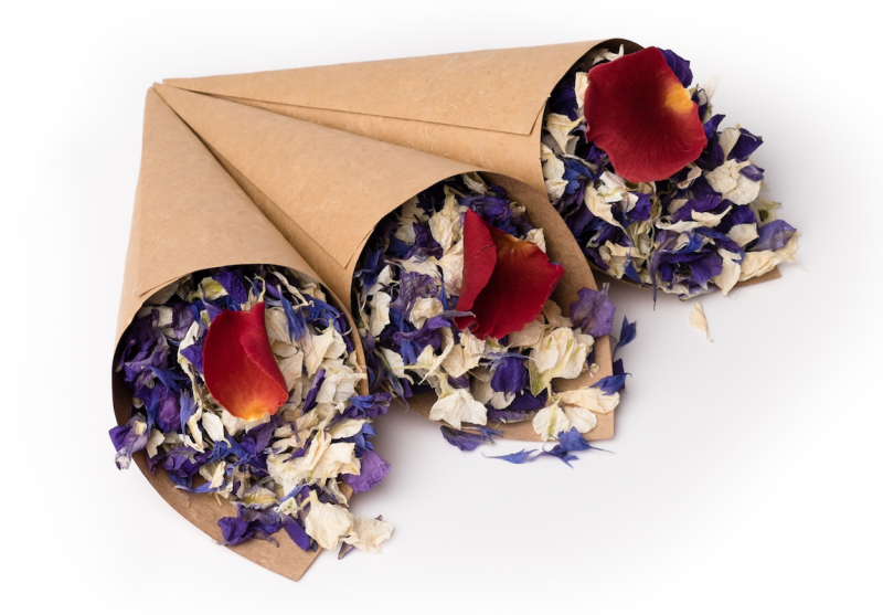 Craft_Confetti_Cones_with_Midnight_Blue__Blue_Bird__Icing_Sugar_and_Lady_in_Red