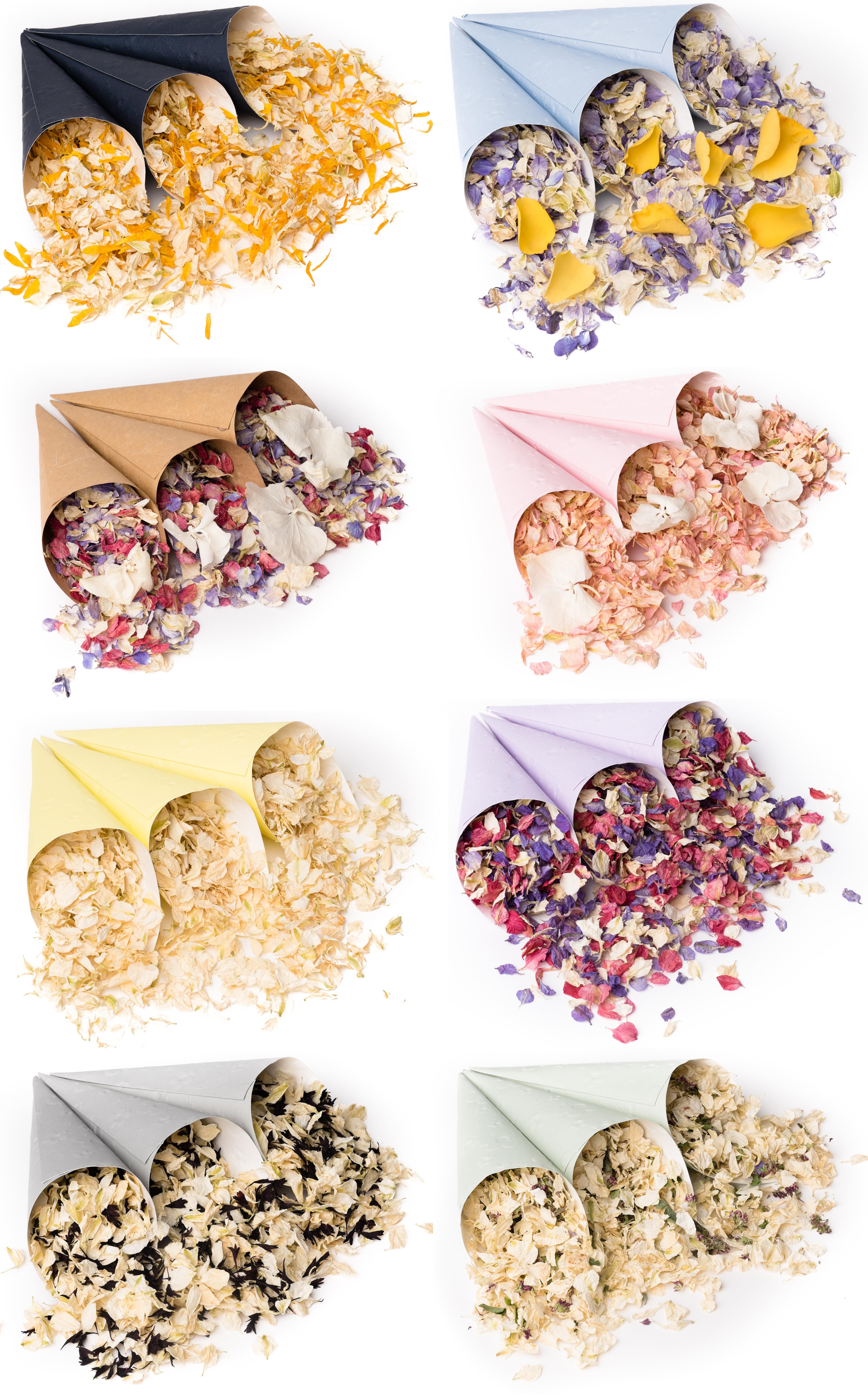 Pretty New Confetti Cones Biodegradable Petal Confetti