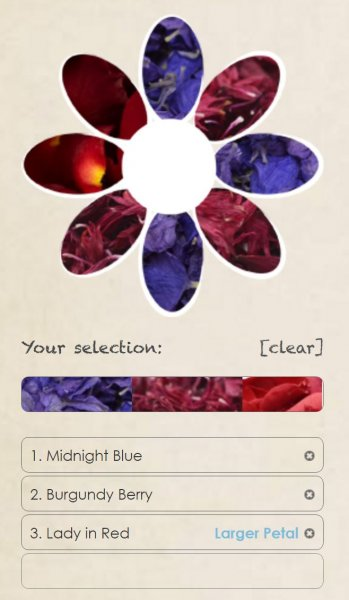 Midnight_Blue__Lady_in_Red__Burgundy_Berry
