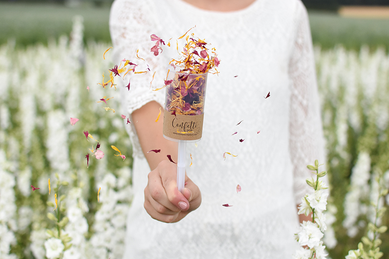 Shropshire_Petals_Kraft_Confetti_Pop_filled_with_Pick___Mix_Ginger_Snap__Burgundy_Berry__Raspberry_Fool__Aubergine_and_Celementine__04_