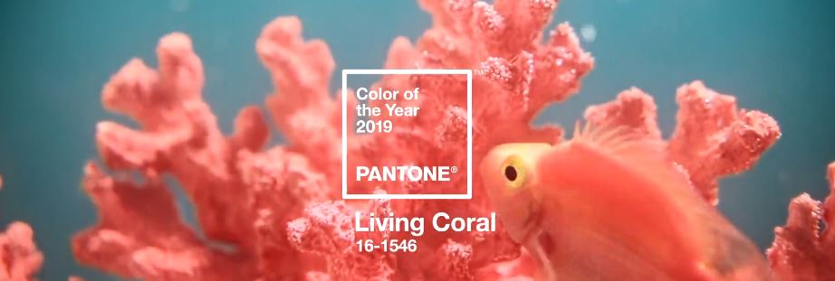 Pantone_Colour_of_the_Year_1