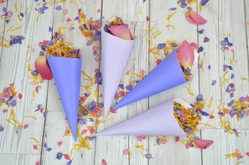 July_MOTM_Ultra_Violet_Confetti_Cones_Wood_Background___CB__A__HB__PR__4_