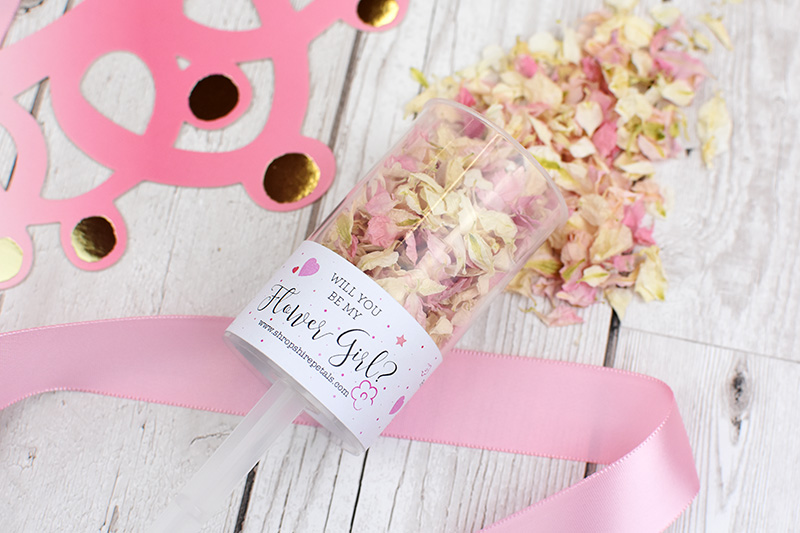 Shropshire_Petals___Will_you_be_my_Flower_Girl_Confetti_Pop___Blush_Confetti_mix__06_