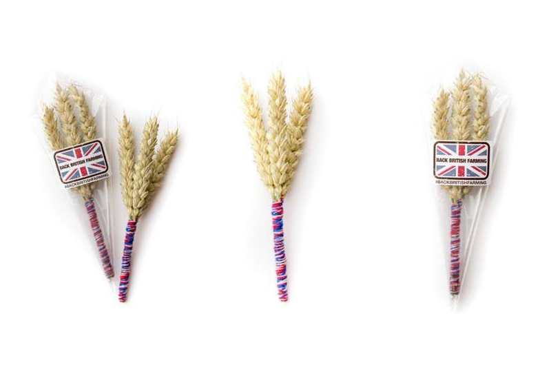 Back_British_Farming_Day_Buttonholes