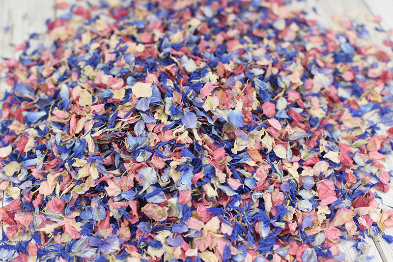 Shropshire_Petals_Pick___Mix_Blue_Bird__Candy_Floss__Cherry_Blossom__Frosted_Blue__01_