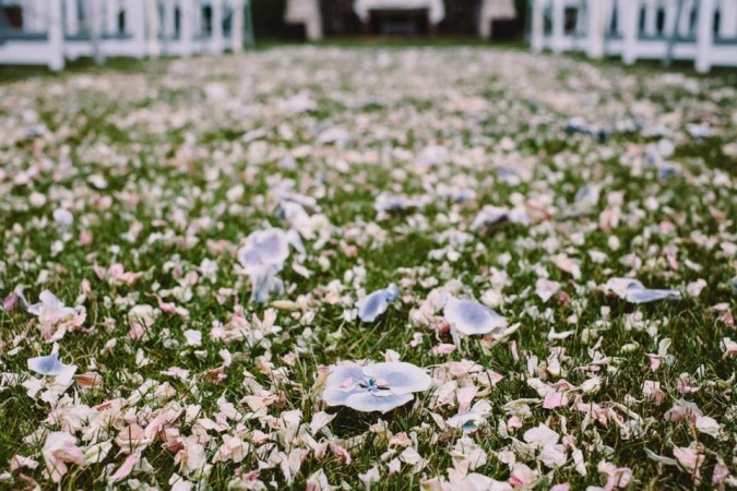 how to make dried rose petal confetti