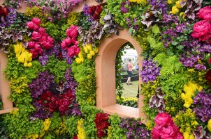 colourful_floral_display