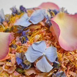June_mix_of_the_month_summer_natural_petal_confetti