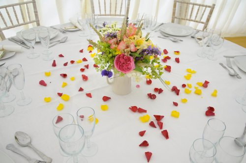 rose_petals_sprinkled_on_a_table