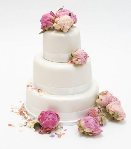 Natural Cake Decorating Ideas : Confetti and Cake Biodegradable Confetti, Natural Petal ...