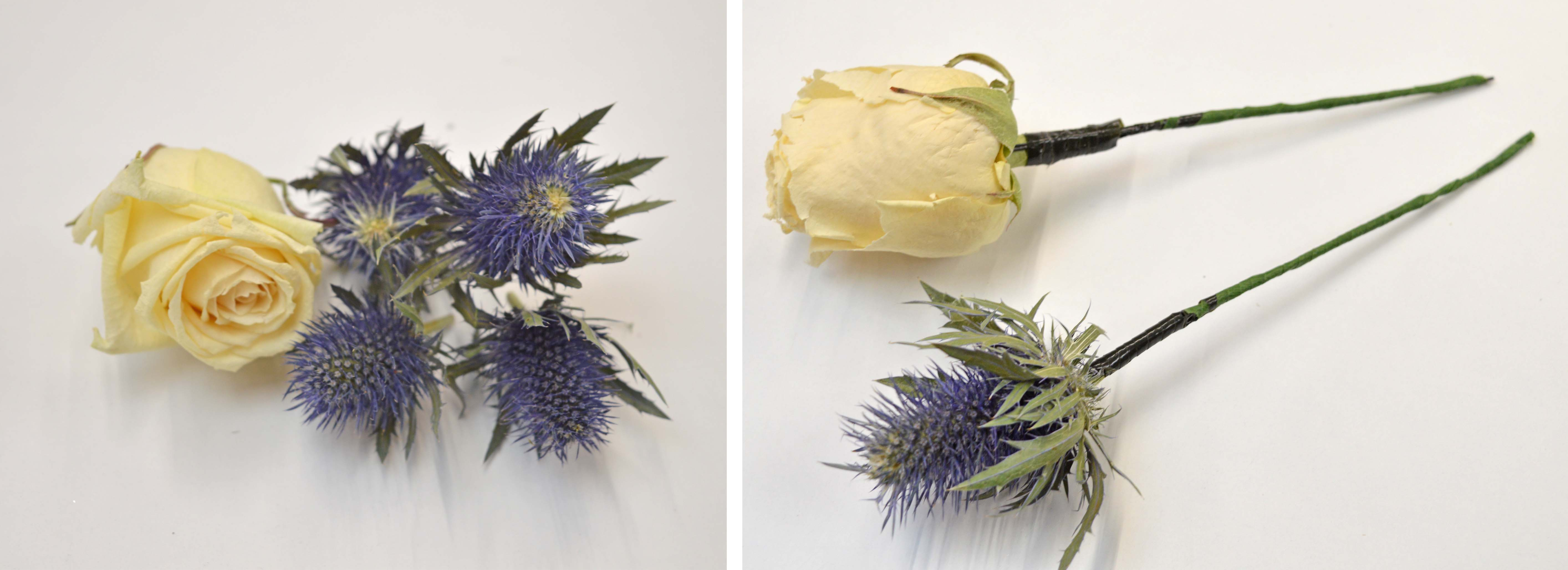 rose_heads_and_thistle_heads